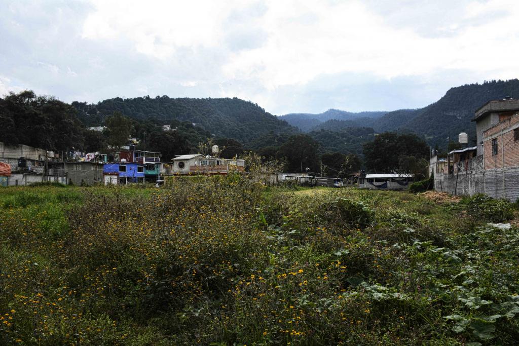 Lomas Cuicuilco