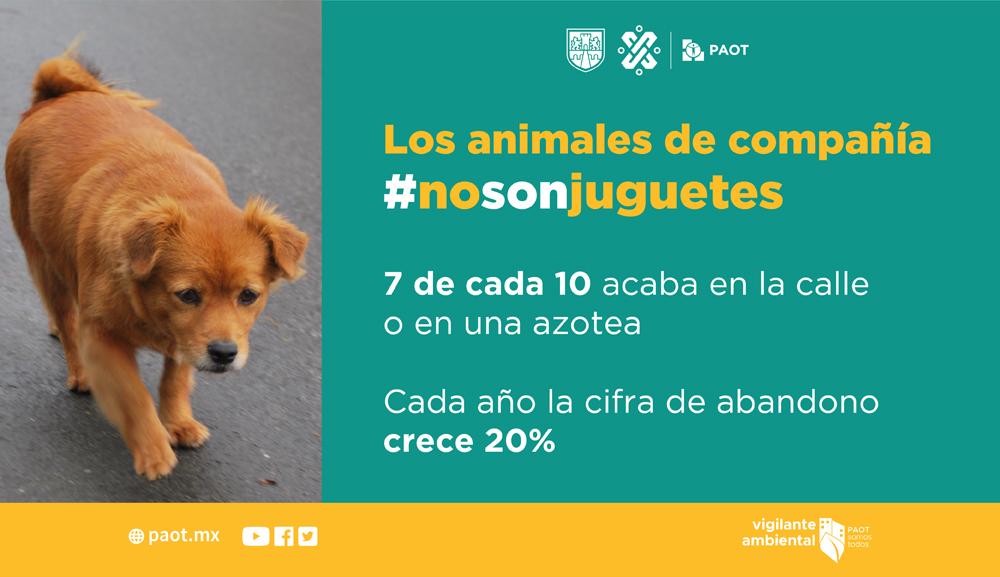 NoSonJuguetes_infografia
