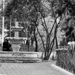 imagen de la explanada del centro de Tlalpan Cerrada