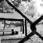 imagen de parque de Tlalpan