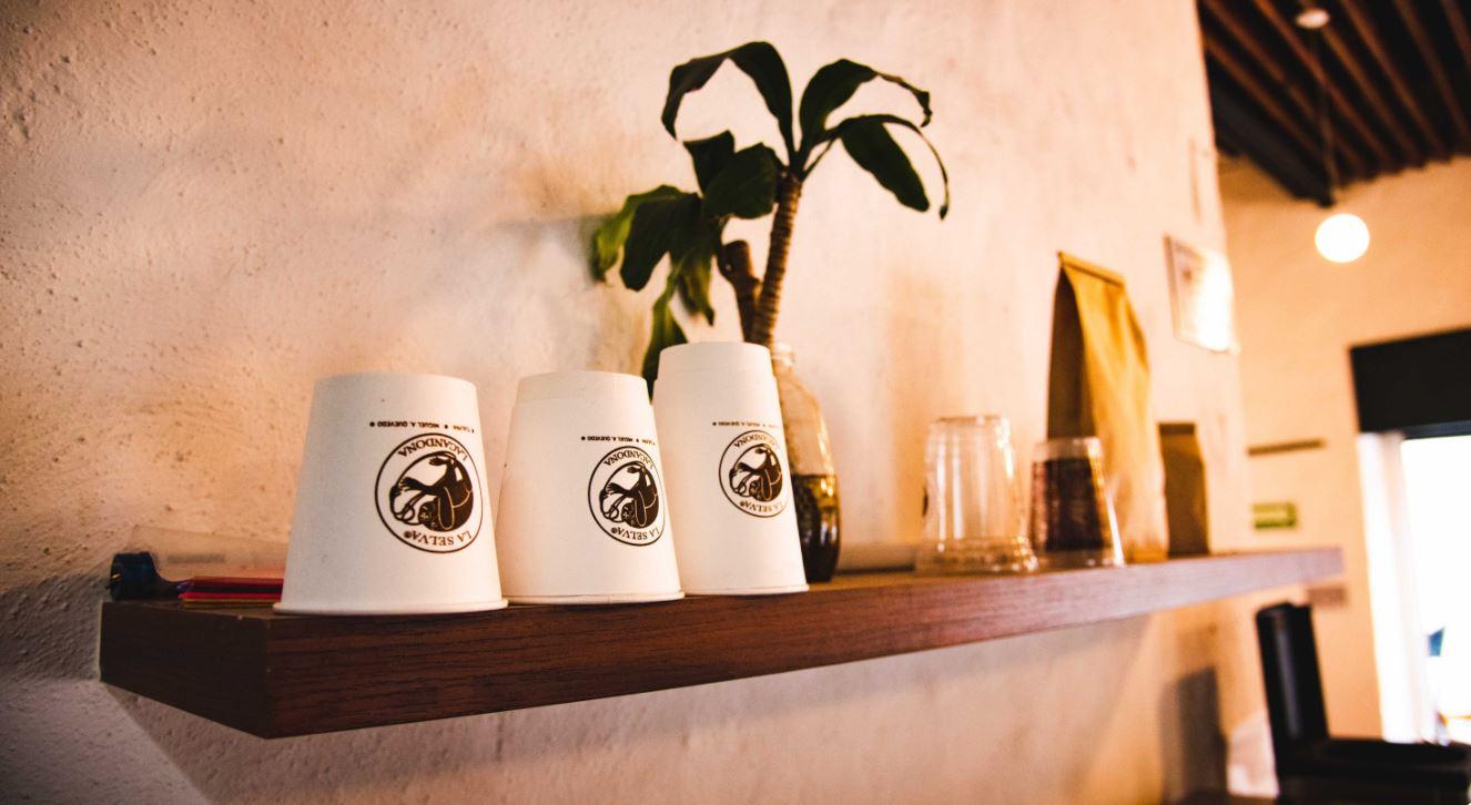 café la selva Tlalpan