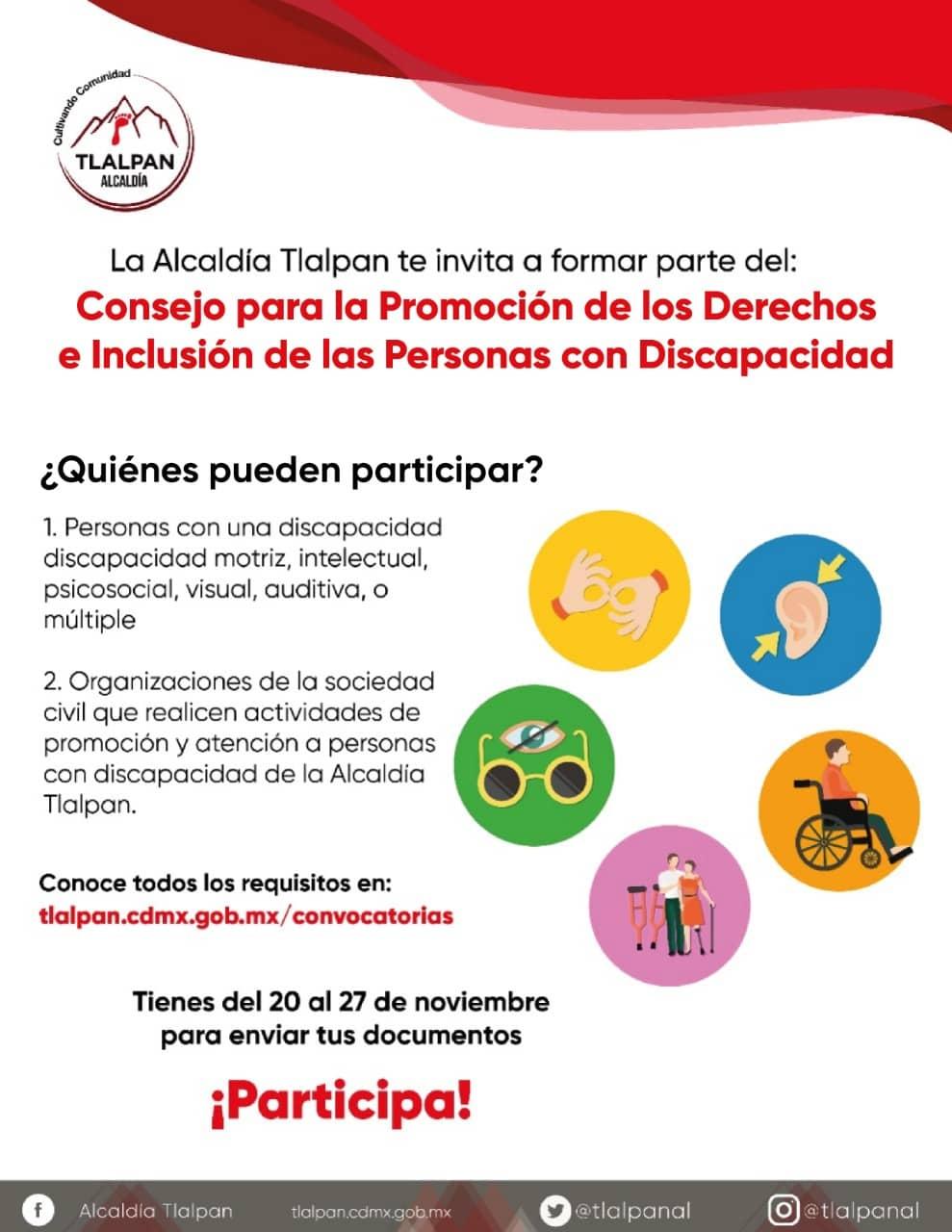 Convocatoria promoción discapacidad