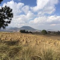 ruta-ciclista-tlalpan-3